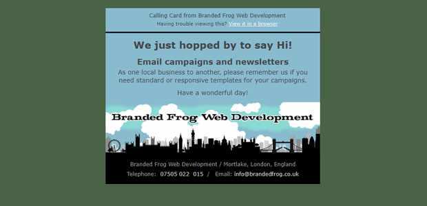 Branded Frog: Web Design - E-Commerce
