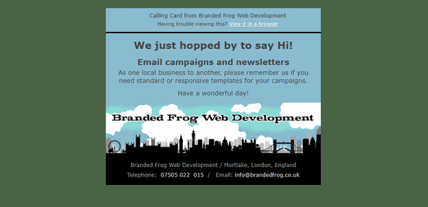 Branded Frog: Web Design - E-Commerce